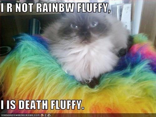 deathfluffy - Google Search