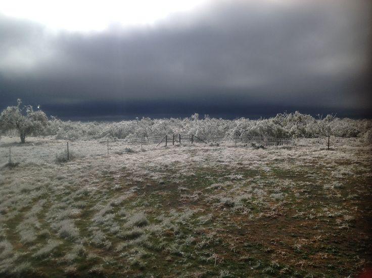 Cold West Texas Morning Near Eldorado. Part 64