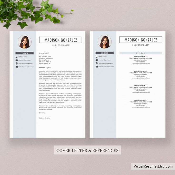 2020 Resume Template / CV Template, Professional Resume