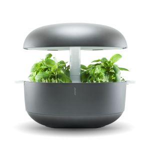 Smart Garden 6 Smart Garden Indoor Garden Hydroponic 400 x 300