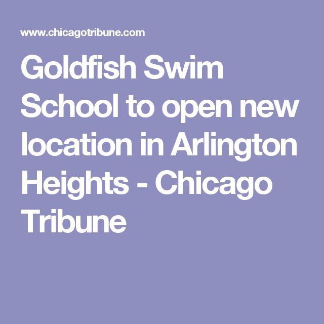 Goldfish Swim School to open new location in Arlington Heights - Chicago Tribune