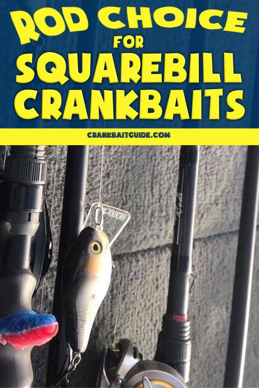How to Choose a Crankbait Rod (Squarebill Edition) | Fishing