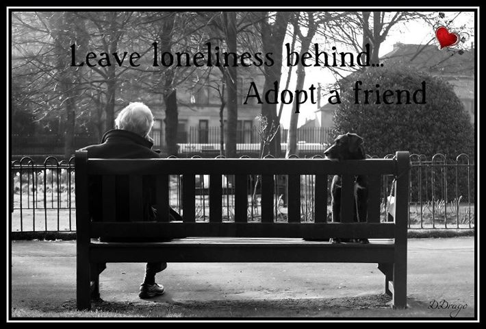 a cure for loneliness