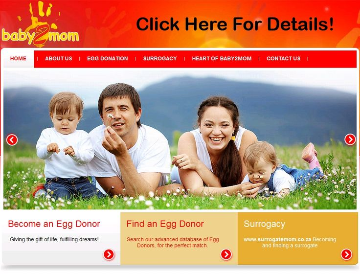 South Africa is now known as one of the places to strongly consider for egg donation. It is therefore essential to do thorough research to find a quality, professional and established egg donation agent.