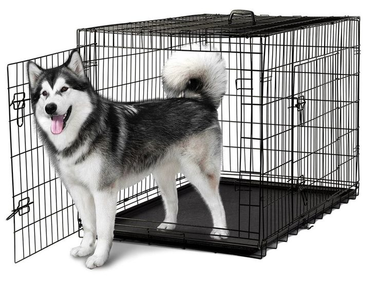 Big Dog Metal Crate Large Folding Steel Puppy Kennel Strong 48 Inch Pet Cage Pan #Oxgord