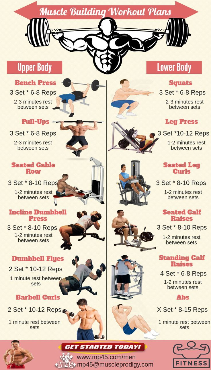 Body Building Workouts Workout Routine For Men Workout Plan Gym Workout Plan For Men
