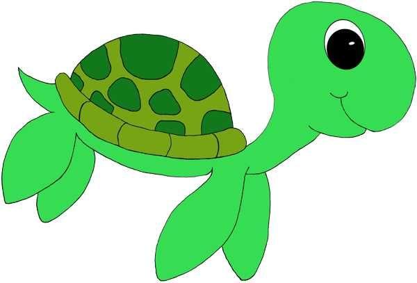 Cute Turtle - ClipArt ...