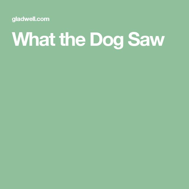 What the Dog Saw