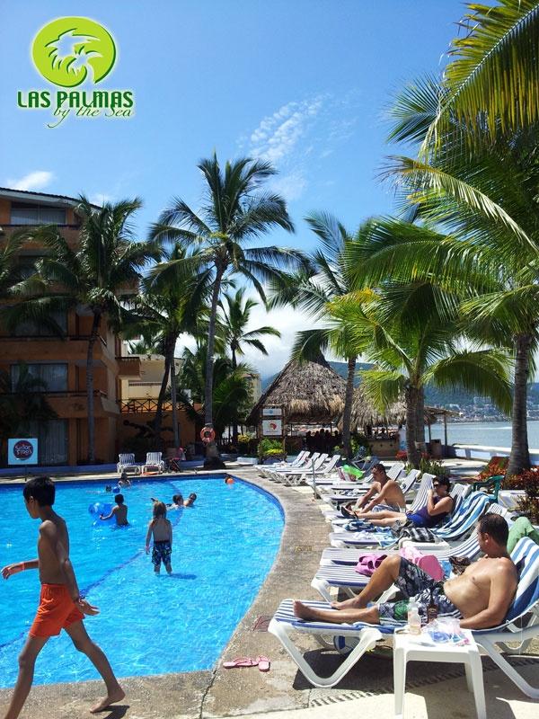 8 best piscina images on pinterest pools puerto vallarta and hotels - Piscina las palmas ...