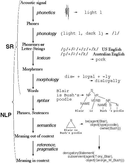 Map of the discipline of linguistics