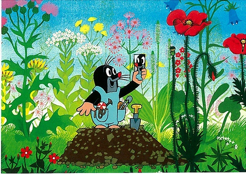 """Met 'Krtek' maakte Zdeněk Miler in 1956 een tijdloze tv-serie met prachtige achtergronden en een hartverwarmend hoofdpersonage.  Bij een klik op de link kom je tercht bij één van mijn favorieten: """"Het molletje als schilder"""", waarin het molletje op kleurrijke wijze een vos wegjaagt."""