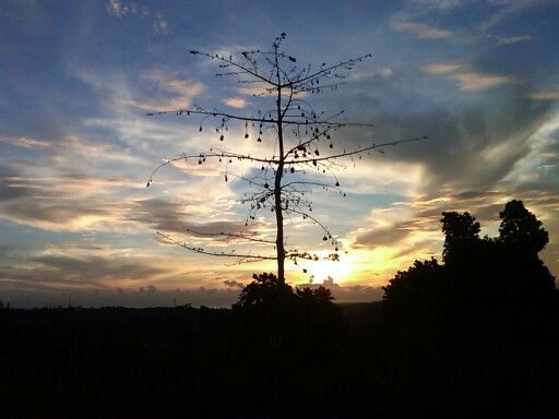Sunrise Bontang ..