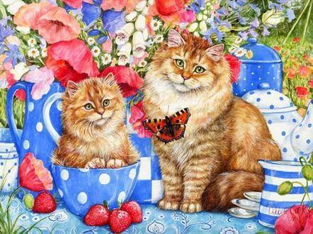 Фото Рыжие кошка и котенок сидят в окружение посуды, ягод ...