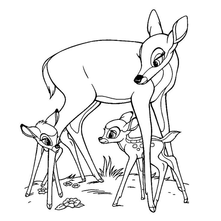 32 best Disney\'s Bambi images on Pinterest   Coloring books, Adult ...