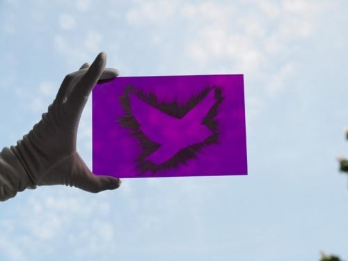 www.facebook.com/marishags  Purple