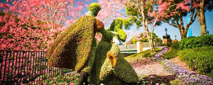 Attend Epcot International Flower & Garden Festival