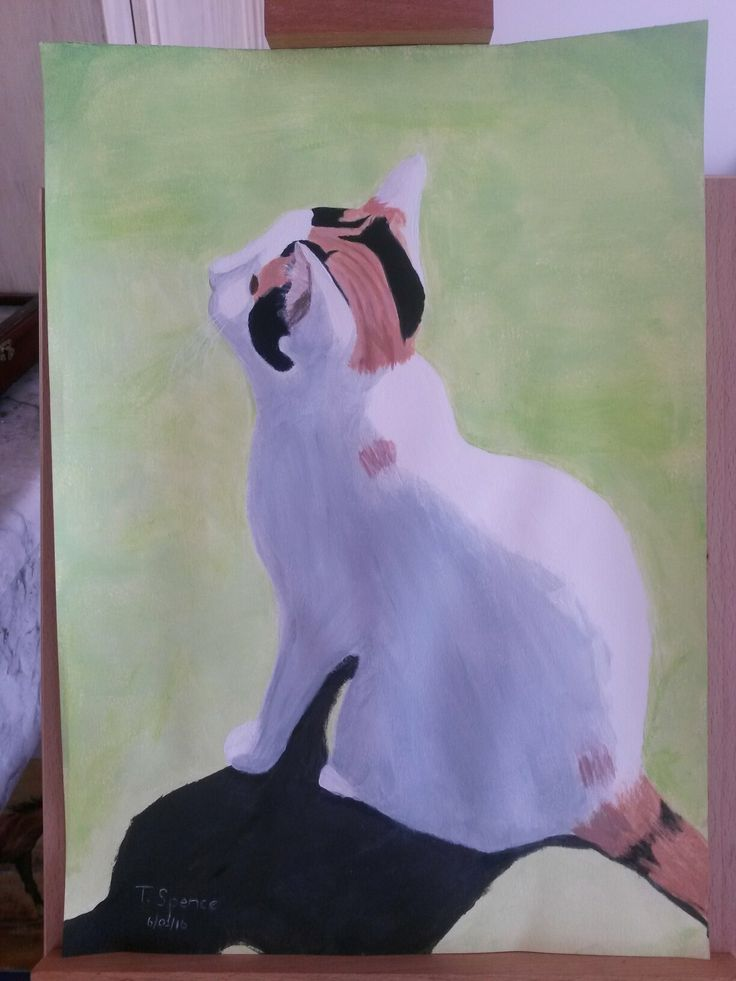 Acrylic cat. In memory of Twinkles. By Tracy.