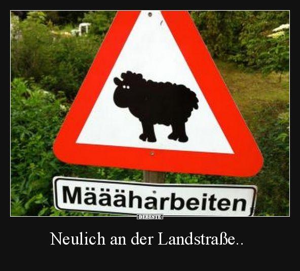 Neulich an der Landstraße.. | Lustige Bilder, Sprüche, Witze, echt lustig