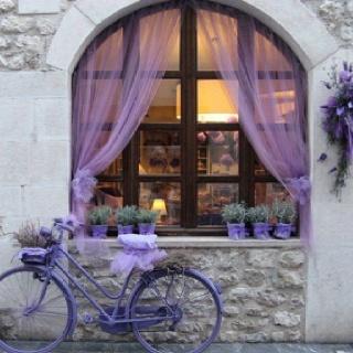Krakow, Poland. Places to go.: Stores Front, Bicycles, Curtains, Shades Of Purple, Window, Color, Places, Lavender, Vintage Bike