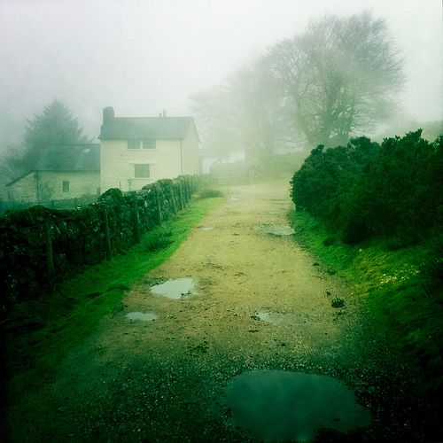 ... I walked on a foggy road.... up to my cottage.... and a nice cup of tea! Foggy Lane, Dartmoor, England
