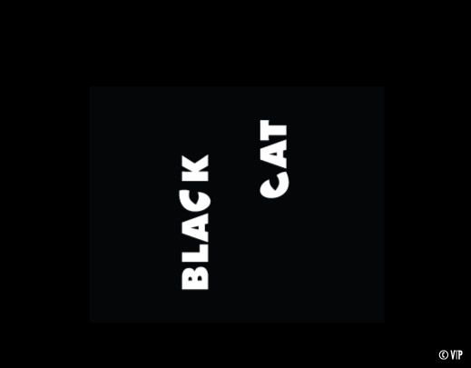 Black Cat pic on Design You Trust: Cat Pics, Black Cats