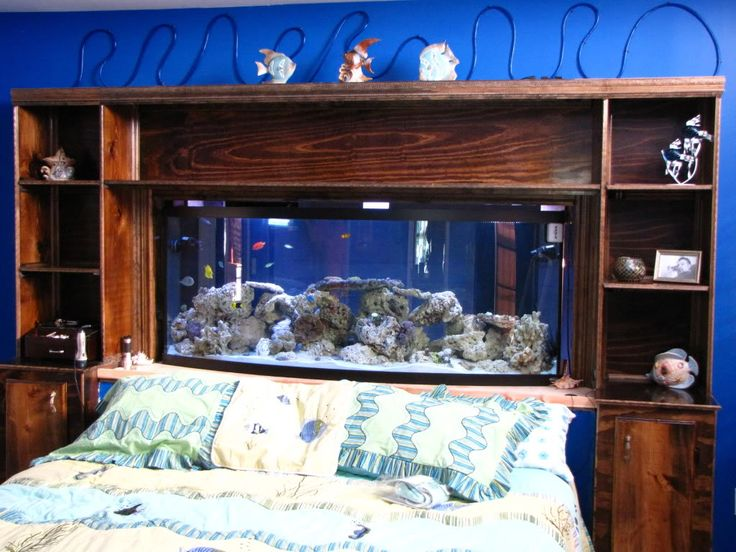Here's a pic of my Headboard fish tank | REEF2REEF Saltwater and Reef  Aquarium Forum