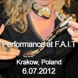 The review of an art event organised in Krakow, July 6th, 2012.