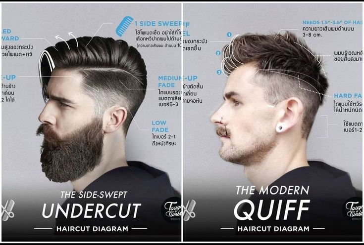 23 Best Haircut Diagram Men Images On Pinterest Mans Hairstyle