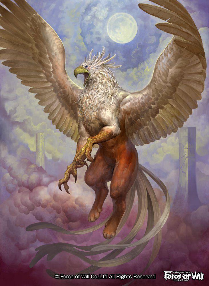Grifo- Criatura- Fantacia- Hibrido- Leon- Aguila