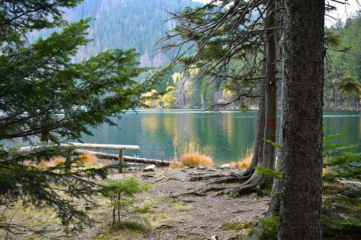 Černé jezero Šumava Les Podzim Láska