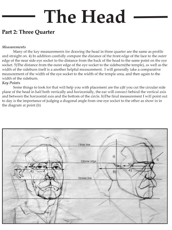 eyecager: Drawing the head with planes/Reilly... - Fuck Yeah Art Tips!
