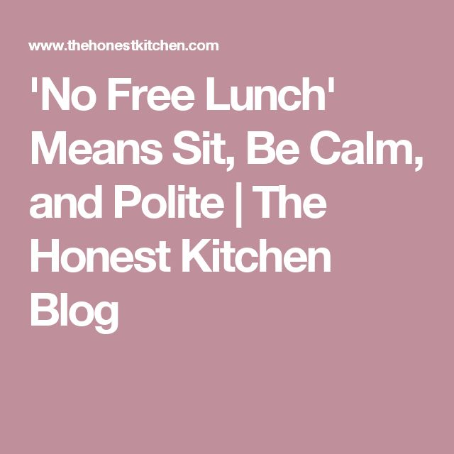 'No Free Lunch' Means Sit, Be Calm, and Polite | The Honest Kitchen Blog