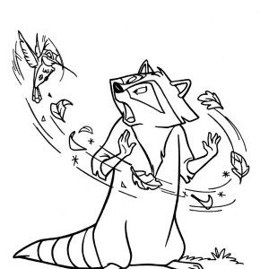 raccoon raccoon and humming bird coloring page raccoon and humming bird coloring page - Bird Coloring Book