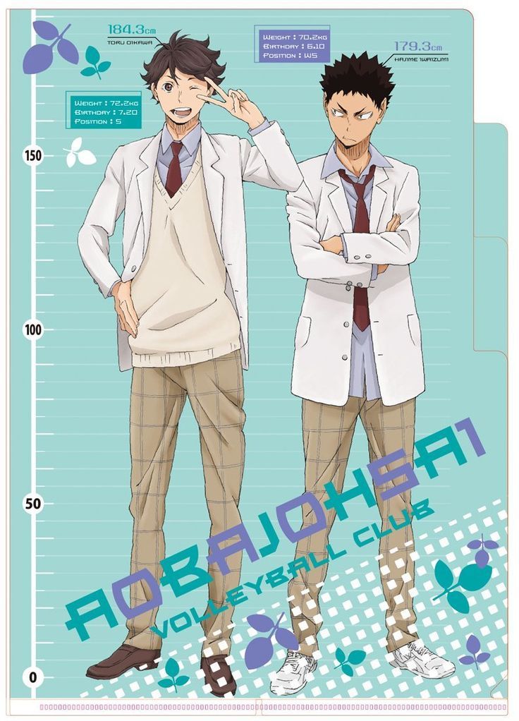 iwaizumi, oikawa, clear file, official art, http://washhh120.tumblr.com/post/122451143847