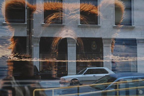heijastuksia lasista 1
