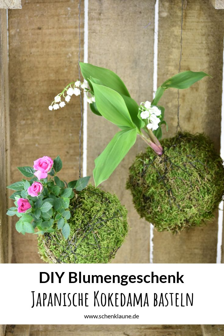 DIY-GESCHENKIDEE: Obwohl japanische Kokedamas aussehen, als kämen sie direkt vom Floristen, könnt ihr sie super einfach und mit nur wenige Materialien selbst machen. Ich zeige euch auf meinem Blog wie das geht. DIY | Blumen schenken | Bonsai | Kokedama | selbstgemacht | schwebende Pflanzen | Frühlingsdeko | Moosball | Blumengesteck