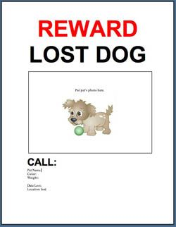 29 best images about tips hints to help with lost found dogs on pinterest good samaritan lost. Black Bedroom Furniture Sets. Home Design Ideas