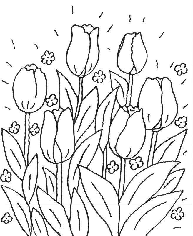 Ausmalbild Blumen Leuchtende Blumen kostenlos ausdrucken ...