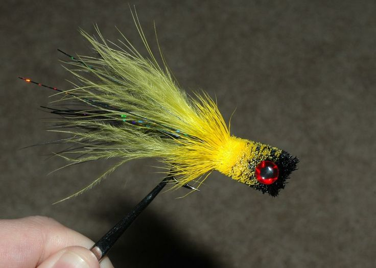 17 best images about flies poppers on pinterest for Fly fishing poppers