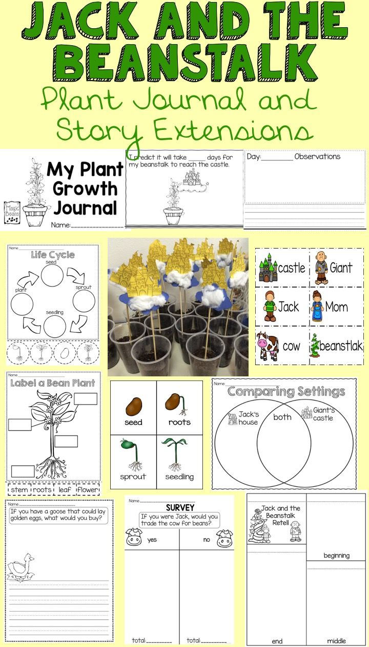 Jack and the Beanstalk story extension activities and plant journal.  Students grow their own bean plant, record observation, and learn about plant growth.  Also includes literacy and math activities that focus on the story.
