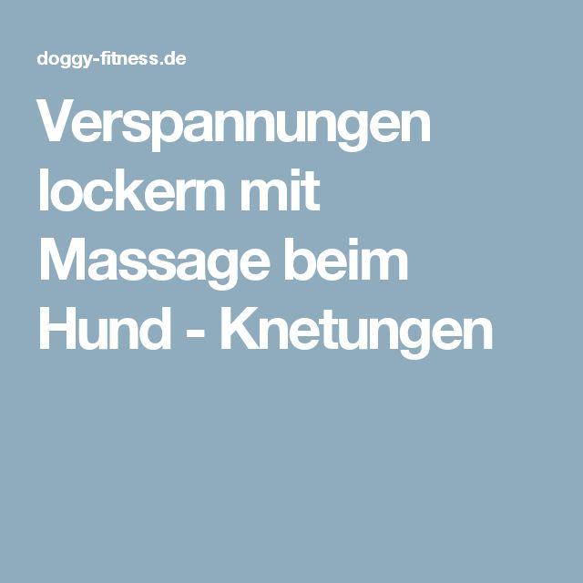Verspannungen lockern mit Massage beim Hund - Knetungen
