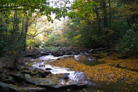West Virginia Caverns | Scene from West Virginia's Monongahela National Forest Wilderness ...