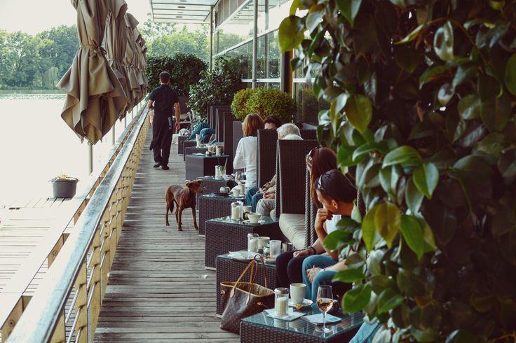 Das Pier 51 in Hannover bietet einen schönen Blick auf den Maschsee, wo Schwäne und Tretboote ihre Bahnen ziehen.