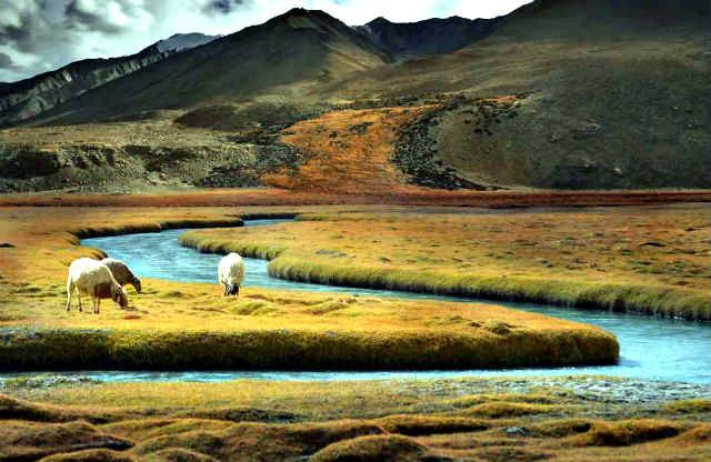 Visiting Lakes in 101 things to do in Leh Ladakh