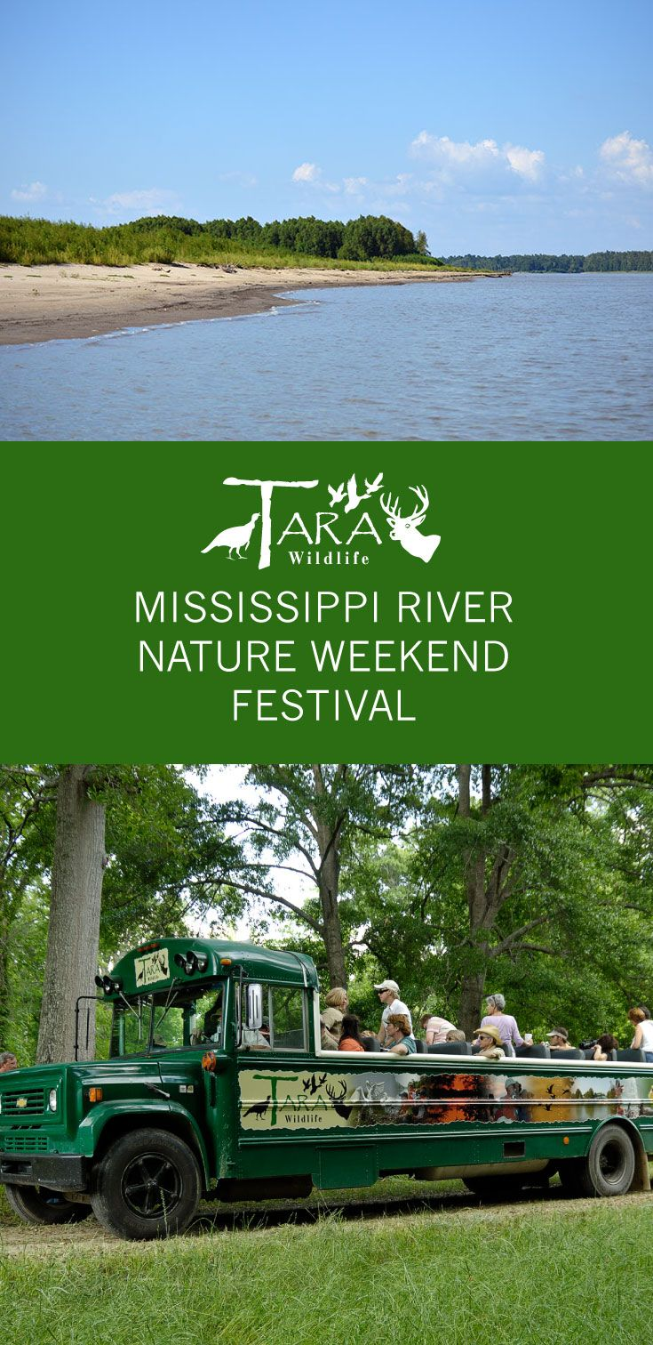 Mississippi River Nature Weekend Festival at Tara Wildlife   Outdoor seminars, nature trails, live music, canoeing on the Mississippi River, birding, etc. Stay all weekend or come just for the day on Saturday. via @tarawildlife
