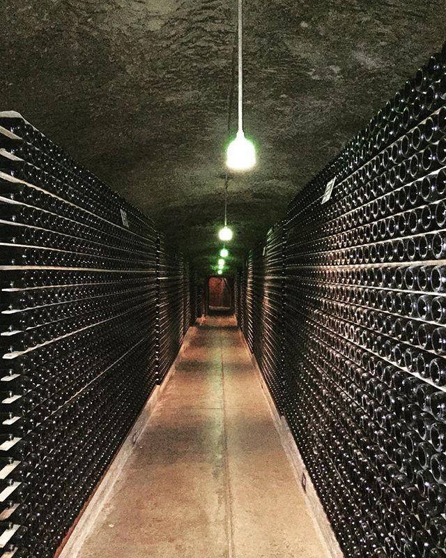 Sparkling #wine bottles for days @schramsberg #Calistoga #NapaValley, 1 of the best sparkling wines. . By contributor: @1mandabear  #summer #foodporn #DrinkMe #DrinkMeMag #DrinkMeMagazine  #yummy #delicious  #NorCal #California  #delish  #thirsty #fresh #DrinkUp #Slurp #wineporn #schramsberg