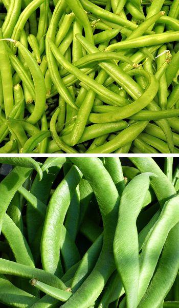 Judías verdes, vainas o ejotes, propiedades y beneficios para la salud