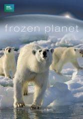Frozen Planet NETFLIX