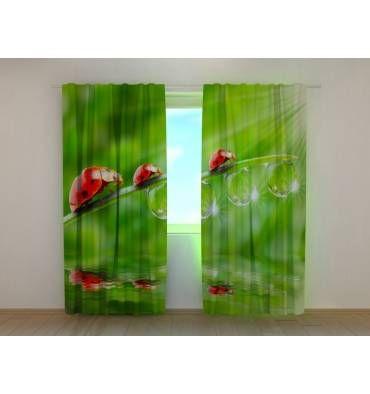 Решили приобрести занавески на окна в гостиную или спальню? У нас есть красивые шторы «Божьи коровки» с фотопечатью по размерам заказчика, с креплением и материалом на выбор. Уточняйте по: +7 (904) 333 31 65