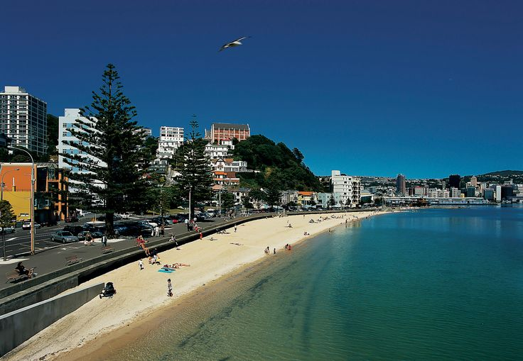 Some of the spectacular #Beaches and #Bay in #Wellington   #Oriental_Bay #Scorching_Bay #Days_Bay & Eastbourne #Island_Bay #Lyall_Bay #Shelly_Bay